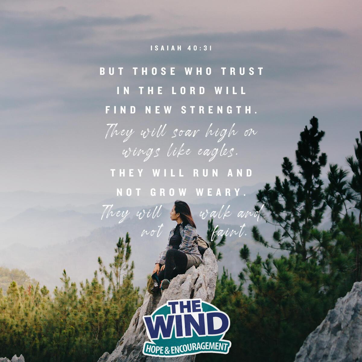 Isaiah 40:31 - Verse of the Day